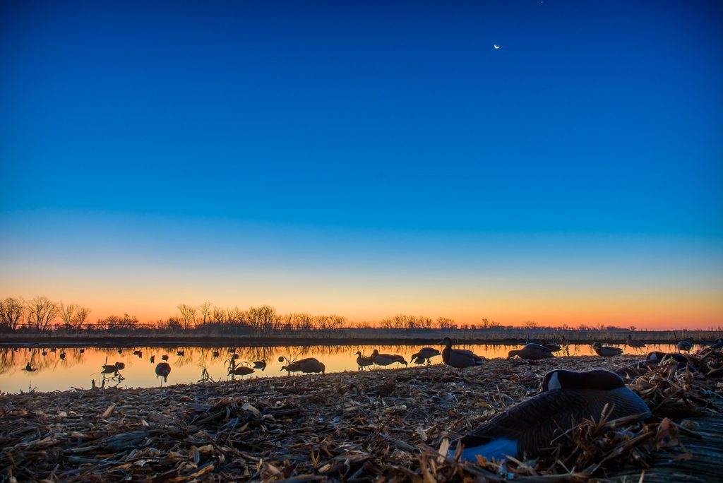 Sunrise at Pheasant Bonanza Waterfowl Hunt