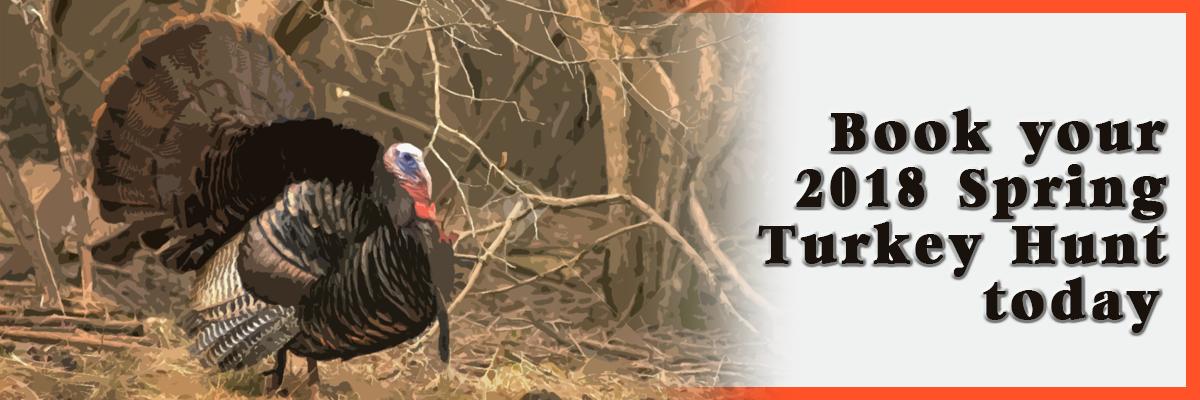 Nebraska Turkey Hunting Guide